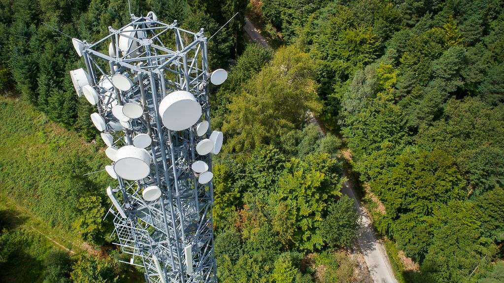 A mobile phone mast in the middle of a forest
