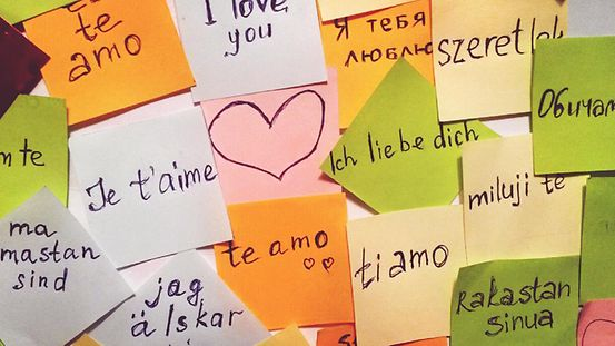 """I love you"" is written in different European languages on lots of colourful sticky notes."